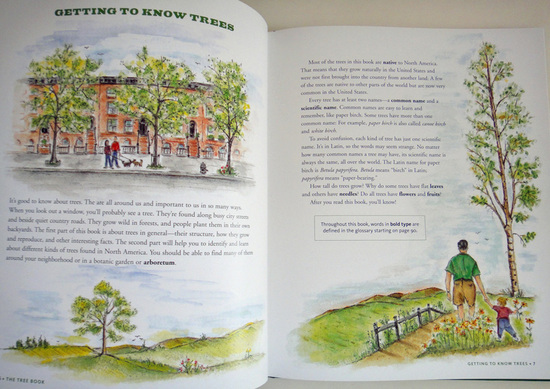 thetreebook1.jpg