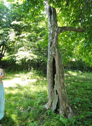 arboretum12.jpg