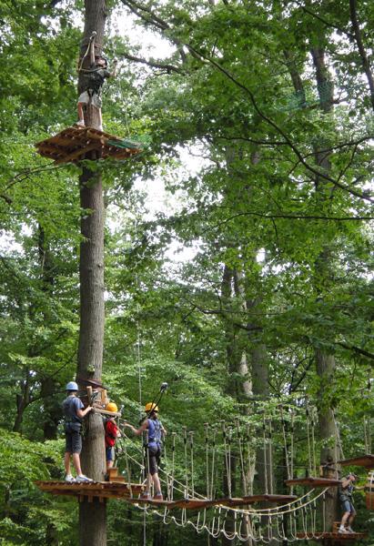 kletterwald3.jpg