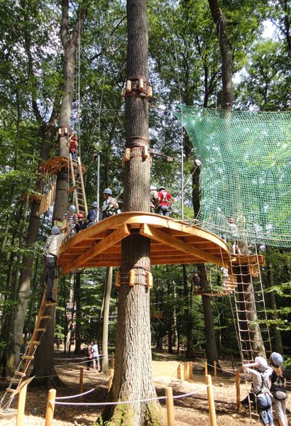 kletterwald4.jpg