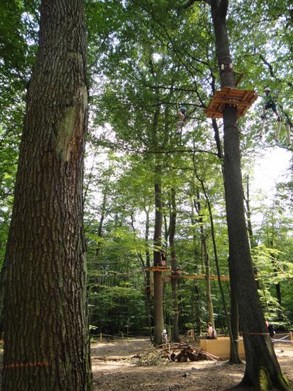 kletterwald6.jpg