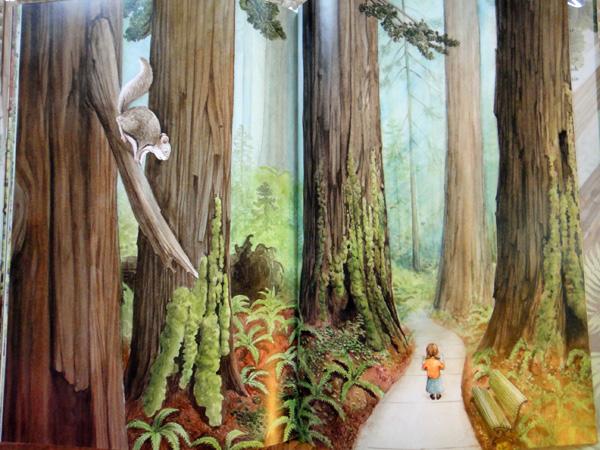 redwoods7.jpg