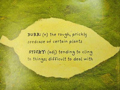stickyburr2.jpg
